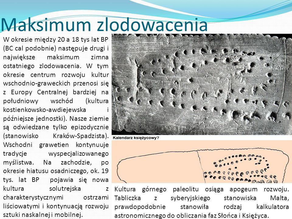 Maksimum zlodowacenia W okresie między 20 a 18 tys lat BP (BC cal podobnie) następuje drugi i największe maksimum zimna ostatniego zlodowacenia. W tym