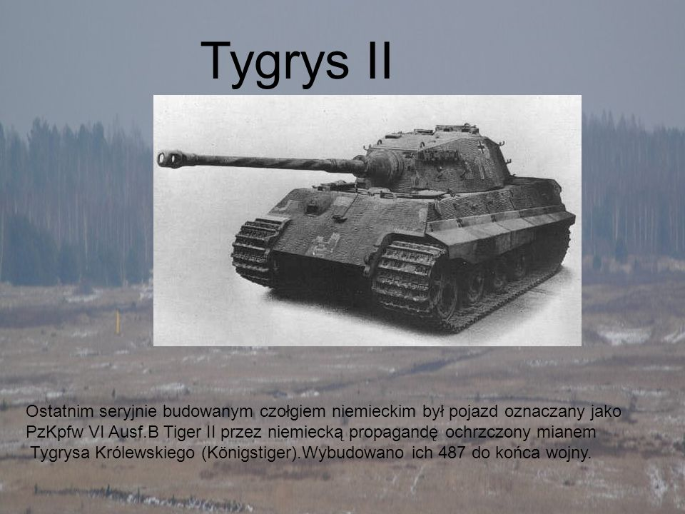 Ostatnim seryjnie budowanym czołgiem niemieckim był pojazd oznaczany jako PzKpfw VI Ausf.B Tiger II przez niemiecką propagandę ochrzczony mianem Tygry