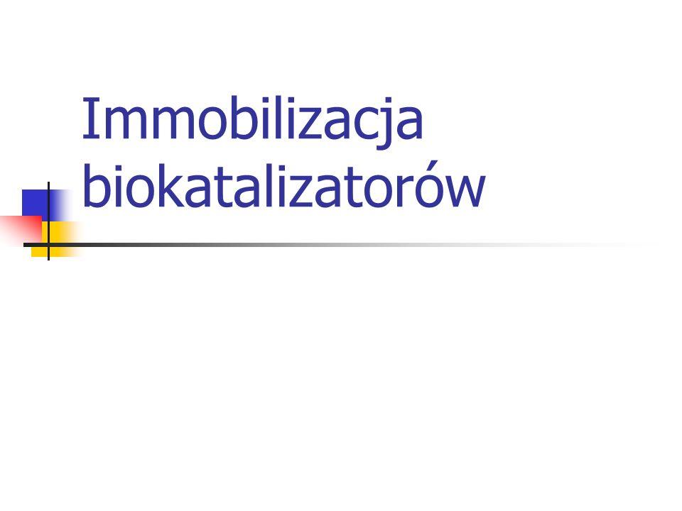 Immobilizacja biokatalizatorów