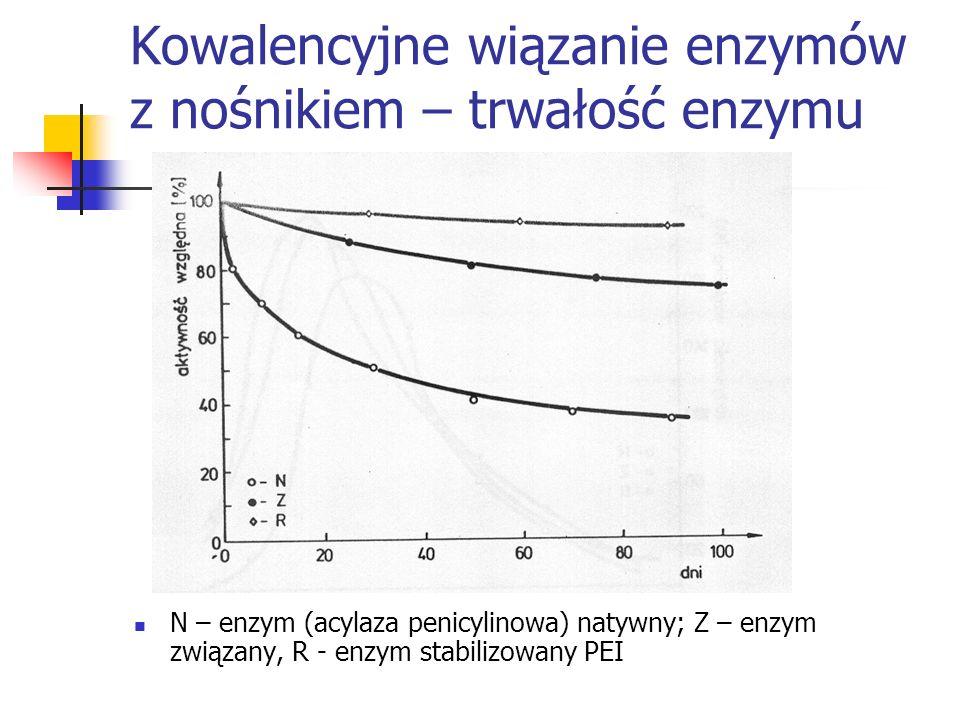 Kowalencyjne wiązanie enzymów z nośnikiem – trwałość enzymu N – enzym (acylaza penicylinowa) natywny; Z – enzym związany, R - enzym stabilizowany PEI