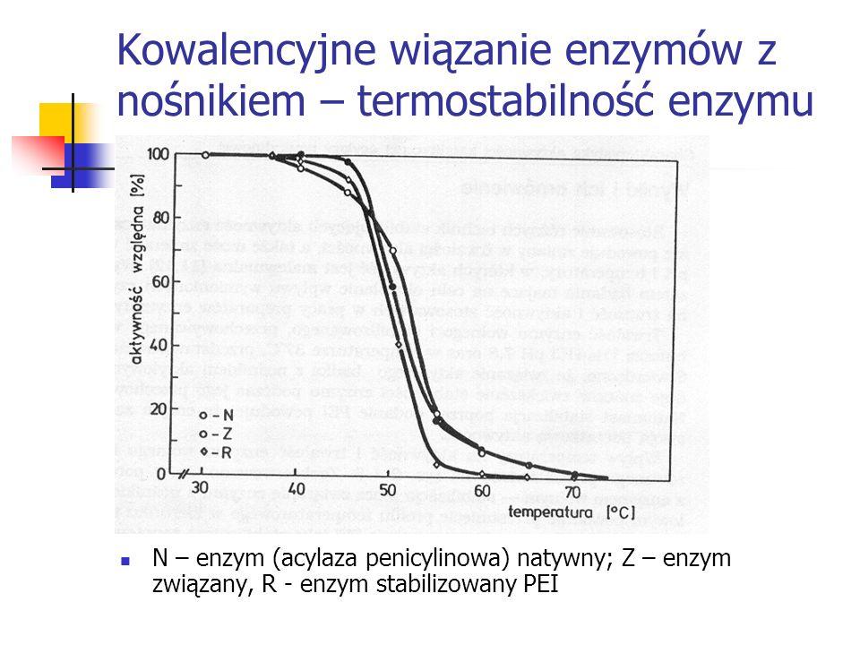 Kowalencyjne wiązanie enzymów z nośnikiem – termostabilność enzymu N – enzym (acylaza penicylinowa) natywny; Z – enzym związany, R - enzym stabilizowa