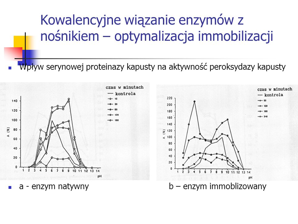 Kowalencyjne wiązanie enzymów z nośnikiem – optymalizacja immobilizacji Wpływ serynowej proteinazy kapusty na aktywność peroksydazy kapusty a - enzym