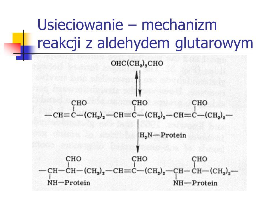 Usieciowanie – mechanizm reakcji z aldehydem glutarowym