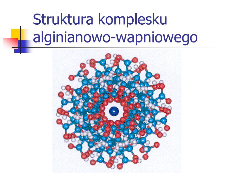 Struktura komplesku alginianowo-wapniowego