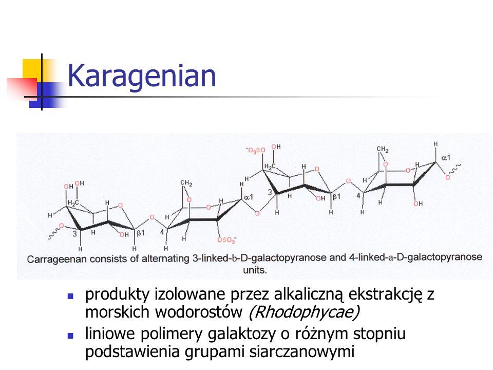 Karagenian produkty izolowane przez alkaliczną ekstrakcję z morskich wodorostów (Rhodophycae) liniowe polimery galaktozy o różnym stopniu podstawienia