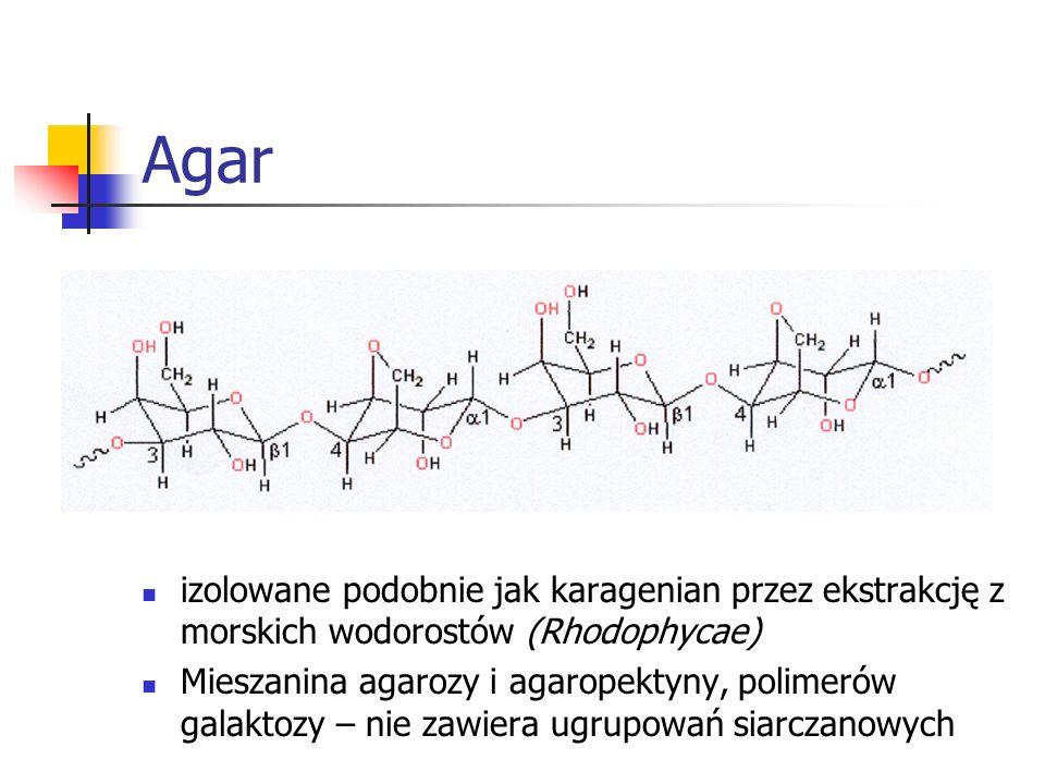 Agar izolowane podobnie jak karagenian przez ekstrakcję z morskich wodorostów (Rhodophycae) Mieszanina agarozy i agaropektyny, polimerów galaktozy – n