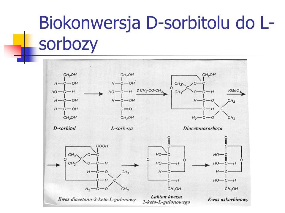 Biokonwersja D-sorbitolu do L- sorbozy