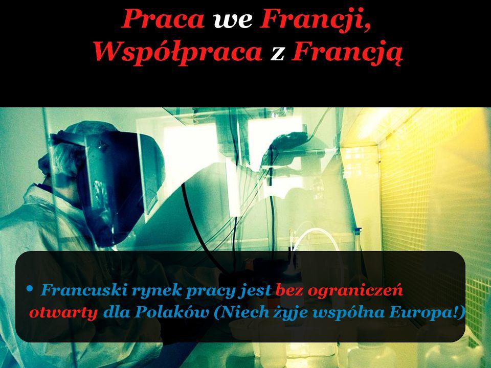 Praca we Francji, Współpraca z Francją Francuski rynek pracy jest bez ograniczeń otwarty dla Polaków (Niech żyje wspólna Europa!)