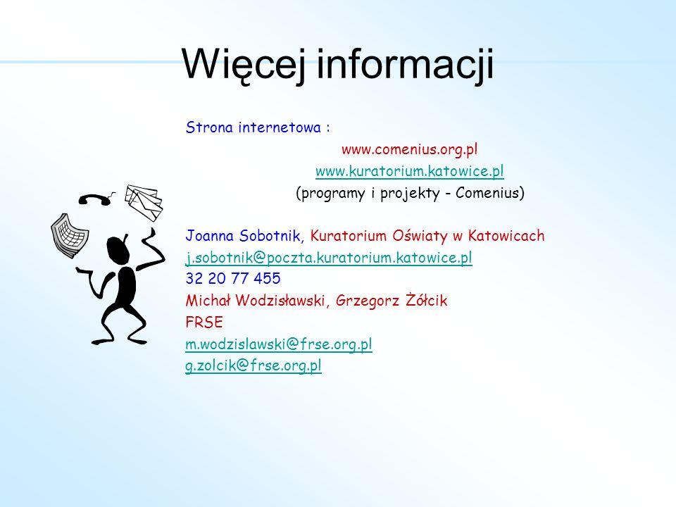 Strona internetowa : www.comenius.org.pl www.kuratorium.katowice.pl (programy i projekty - Comenius) Joanna Sobotnik, Kuratorium Oświaty w Katowicach