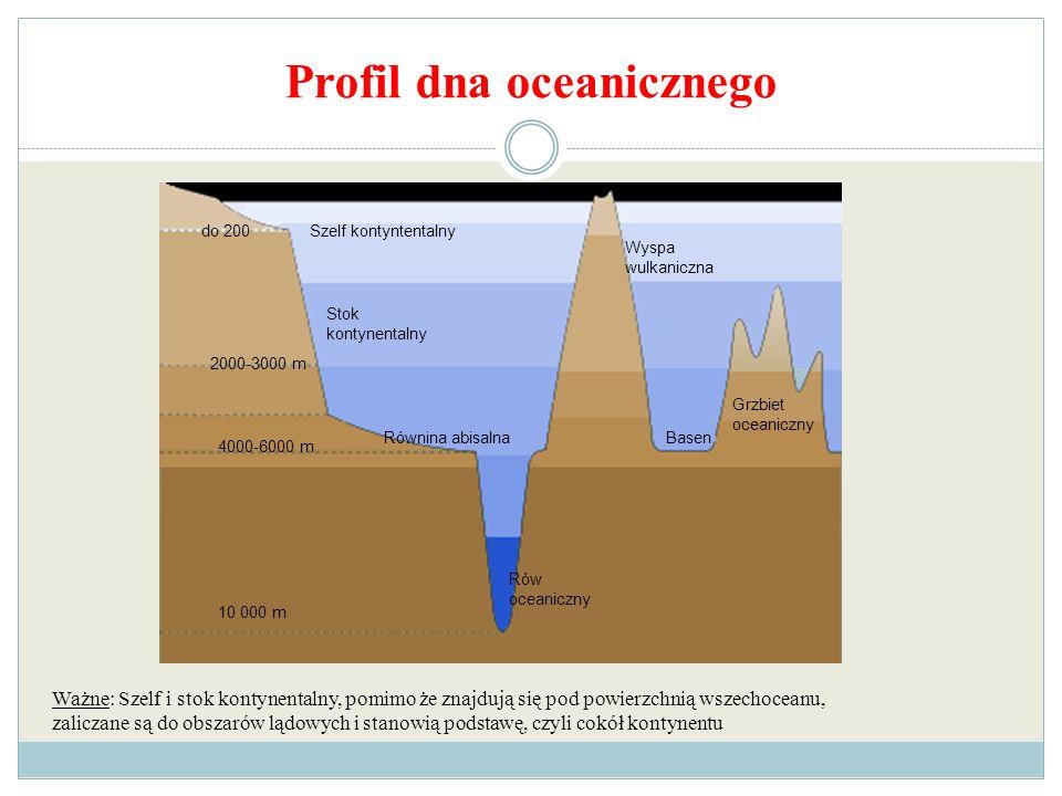 Profil dna oceanicznego Szelf kontyntentalnydo 200 Stok kontynentalny 2000-3000 m 4000-6000 m Równina abisalna 10 000 m Rów oceaniczny Grzbiet oceanic