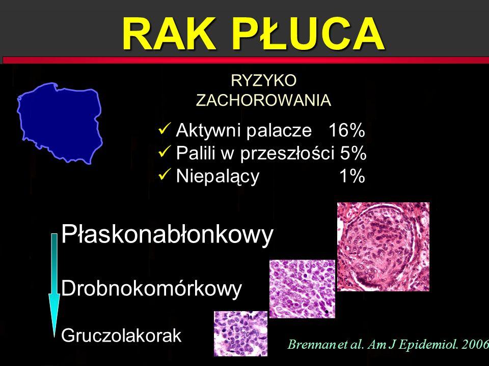 RAK PŁUCA Płaskonabłonkowy Drobnokomórkowy Gruczolakorak Płaskonabłonkowy Drobnokomórkowy Gruczolakorak Brennan et al. Am J Epidemiol. 2006 Aktywni pa
