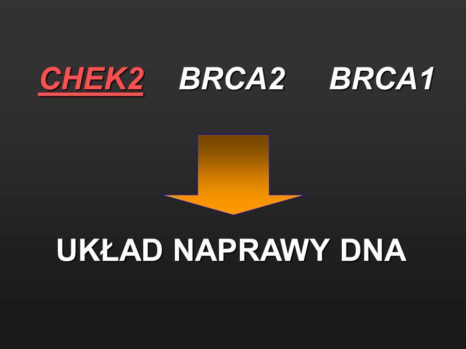 CHEK2 BRCA2 BRCA1 UKŁAD NAPRAWY DNA UKŁAD NAPRAWY DNA