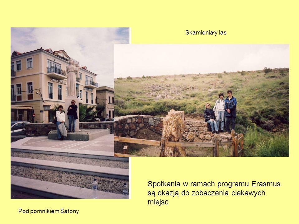 Spotkania w ramach programu Erasmus są okazją do zobaczenia ciekawych miejsc Pod pomnikiem Safony Skamieniały las