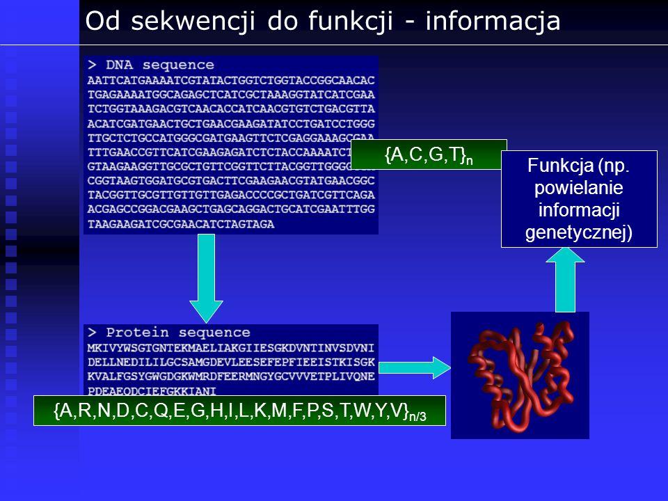 Od sekwencji do funkcji - informacja {A,C,G,T} n {A,R,N,D,C,Q,E,G,H,I,L,K,M,F,P,S,T,W,Y,V} n/3 Funkcja (np. powielanie informacji genetycznej)