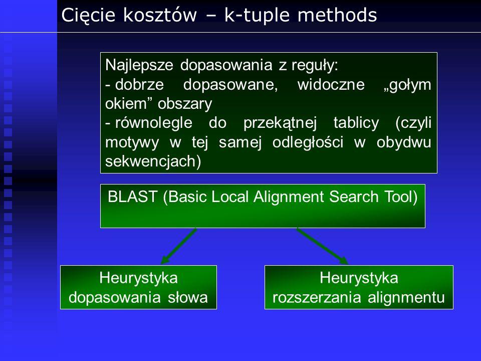 Cięcie kosztów – k-tuple methods Najlepsze dopasowania z reguły: - dobrze dopasowane, widoczne gołym okiem obszary - równolegle do przekątnej tablicy
