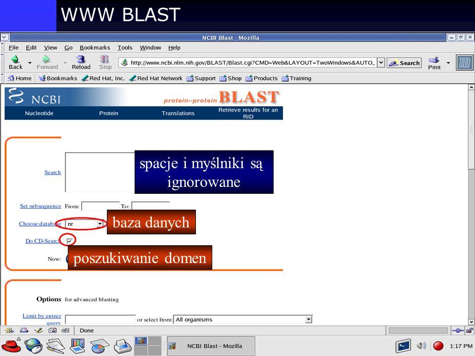 WWW BLAST baza danych poszukiwanie domen spacje i myślniki są ignorowane