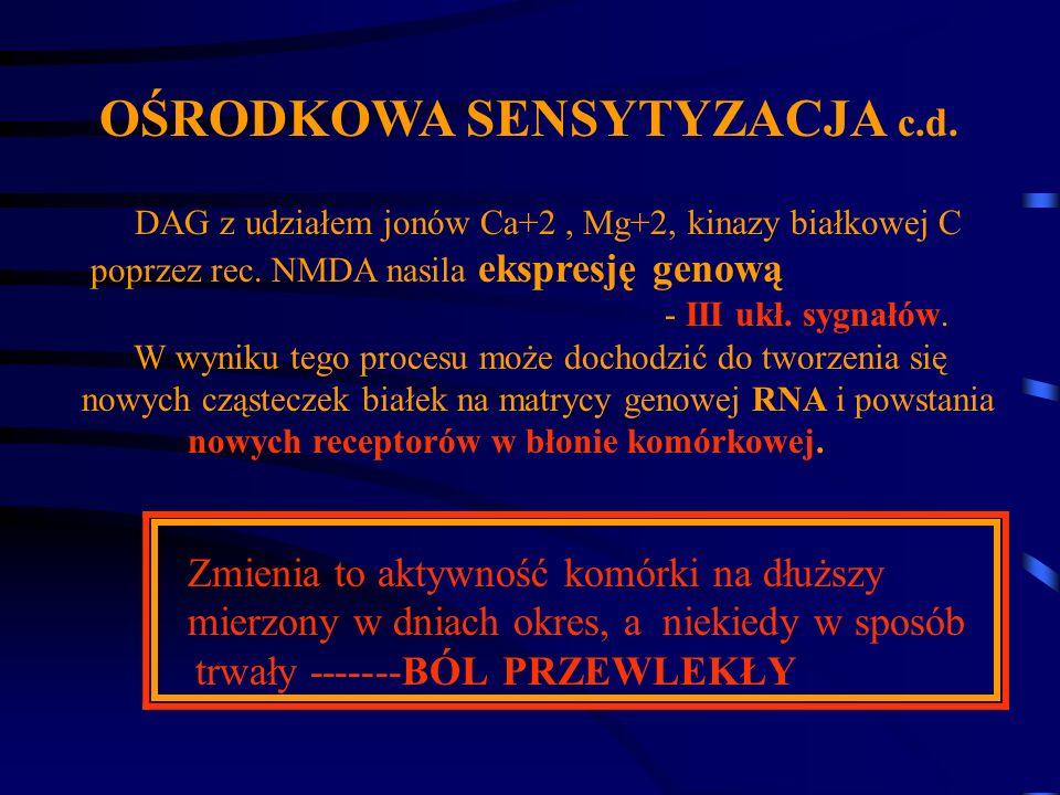 OŚRODKOWA SENSYTYZACJA c.d. DAG z udziałem jonów Ca+2, Mg+2, kinazy białkowej C poprzez rec. NMDA nasila ekspresję genową - III ukł. sygnałów. W wynik