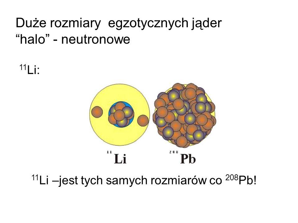 Duże rozmiary egzotycznych jąder halo - neutronowe 11 Li: 11 Li –jest tych samych rozmiarów co 208 Pb!