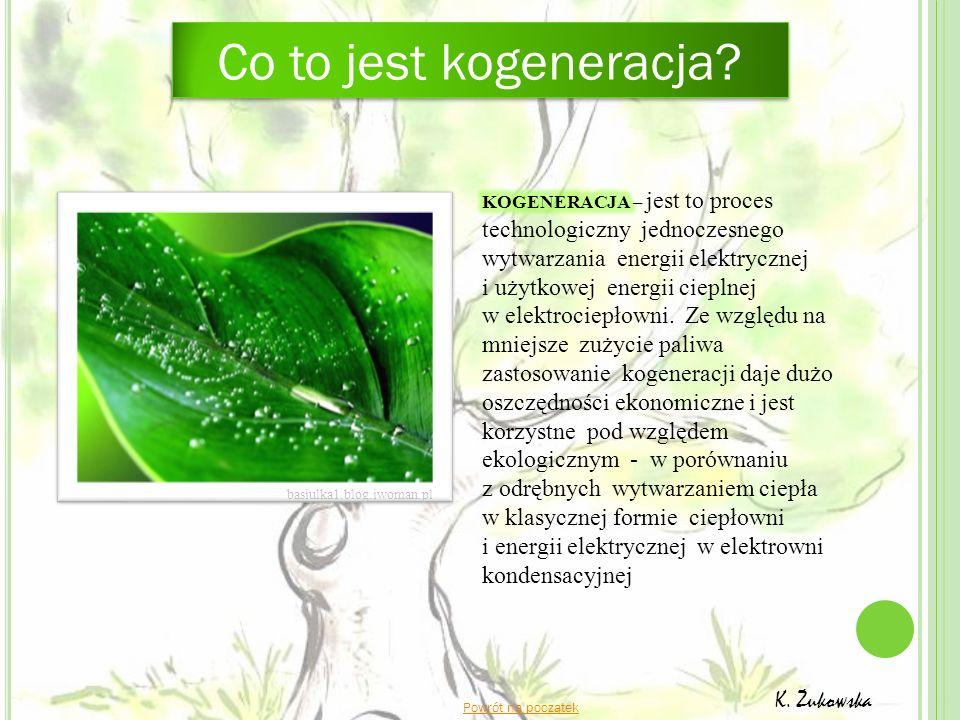Co to jest kogeneracja? K. Żukowska Powrót na początek basiulka1.blog.iwoman.pl