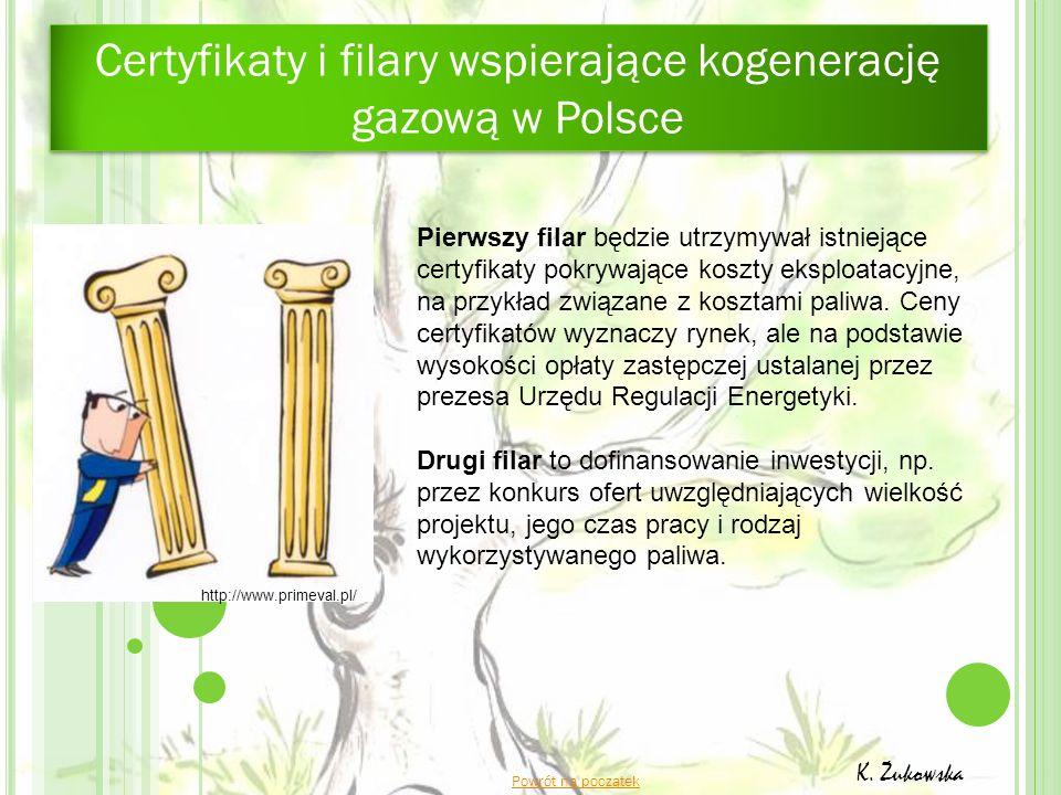 Powrót na początek K. Żukowska Pierwszy filar będzie utrzymywał istniejące certyfikaty pokrywające koszty eksploatacyjne, na przykład związane z koszt