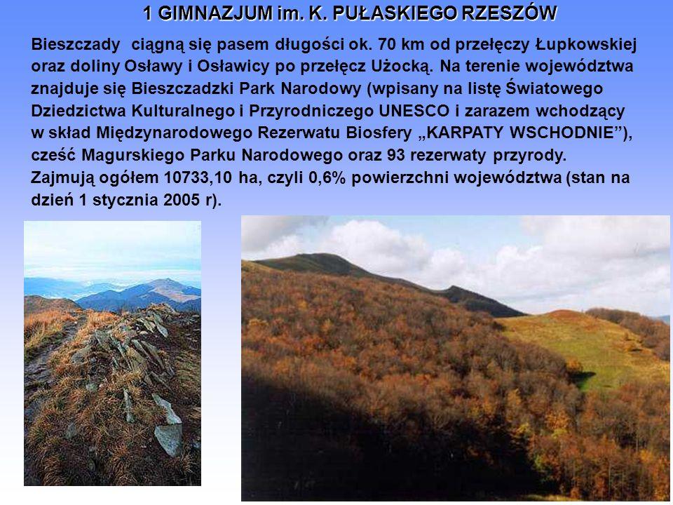 Bieszczady ciągną się pasem długości ok. 70 km od przełęczy Łupkowskiej oraz doliny Osławy i Osławicy po przełęcz Użocką. Na terenie województwa znajd