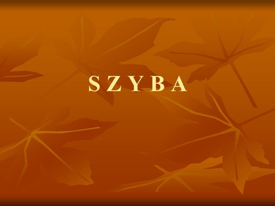 S Z Y B A
