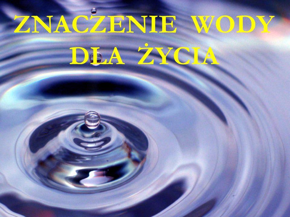 Zapotrzebowanie na wodę Minimalna ilość płynów potrzebnych do prawidłowego funkcjonowania do prawidłowego funkcjonowania organizmu to 0,8 – 1,0 l na dobę.