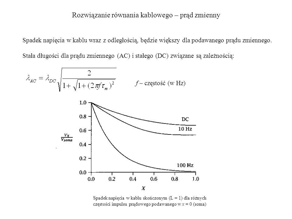 Rozwiązanie równania kablowego – prąd zmienny Spadek napięcia w kablu skończonym (L = 1) dla różnych częstości impulsu prądowego podawanego w x = 0 (soma) Spadek napięcia w kablu wraz z odległością, będzie większy dla podawanego prądu zmiennego.