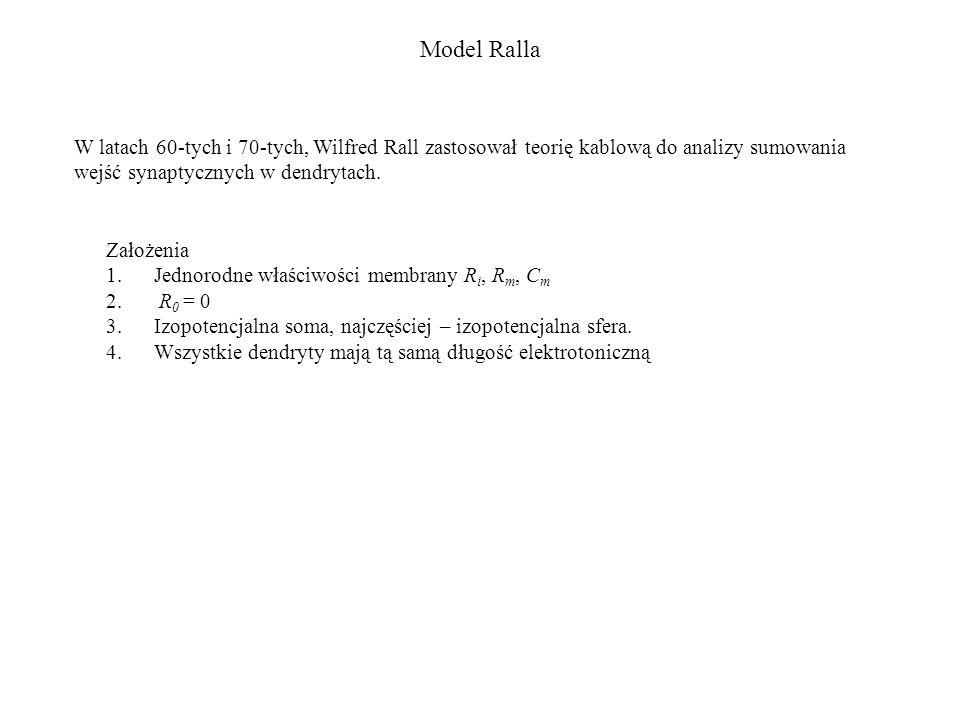 Model Ralla Założenia 1.Jednorodne właściwości membrany R i, R m, C m 2. R 0 = 0 3.Izopotencjalna soma, najczęściej – izopotencjalna sfera. 4.Wszystki