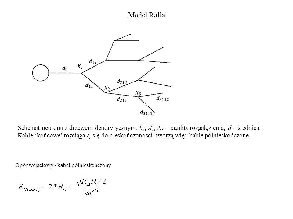 Model Ralla Opór wejściowy - kabel półnieskończony Schemat neuronu z drzewem dendrytycznym. X 1, X 2, X 3 – punkty rozgałęzienia, d – średnica. Kable