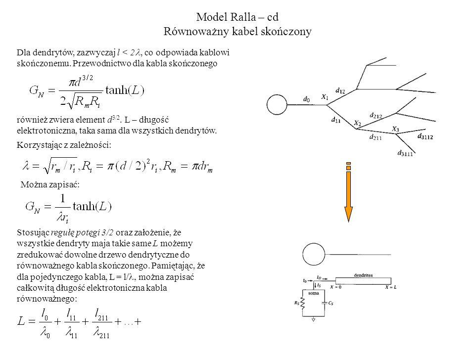 Model Ralla – cd Równoważny kabel skończony Stosując regułę potęgi 3/2 oraz założenie, że wszystkie dendryty maja takie same L możemy zredukować dowolne drzewo dendrytyczne do równoważnego kabla skończonego.