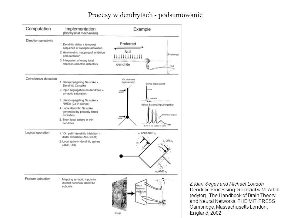 Procesy w dendrytach - podsumowanie Z Idan Segev and Michael London Dendritic Processing. Rozdział w M. Arbib (edytor). The Handbook of Brain Theory a