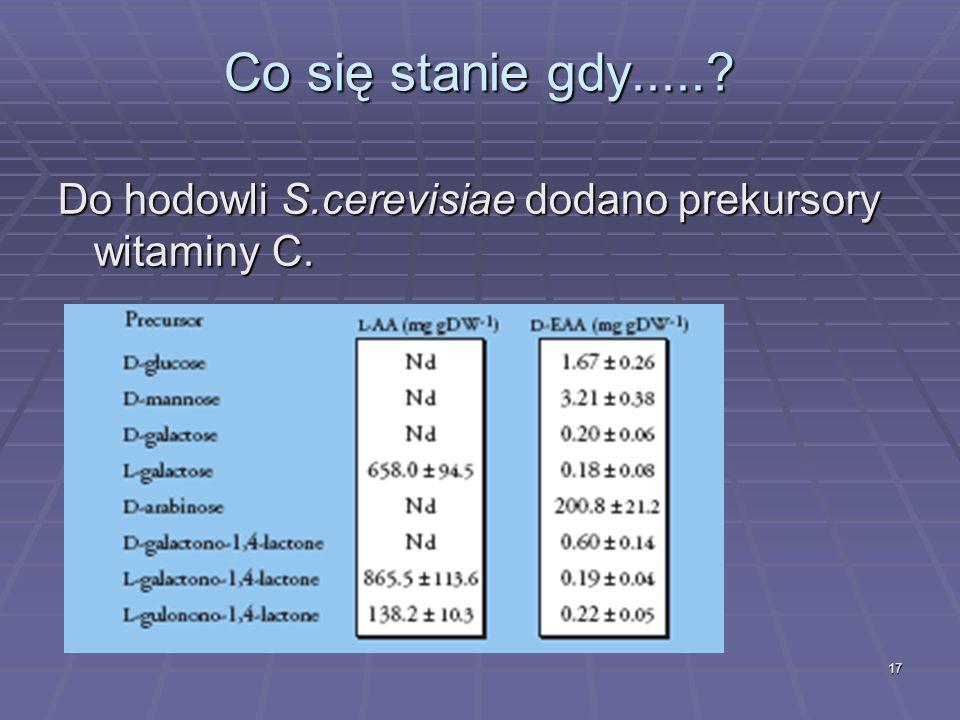 17 Co się stanie gdy.....? Do hodowli S.cerevisiae dodano prekursory witaminy C.