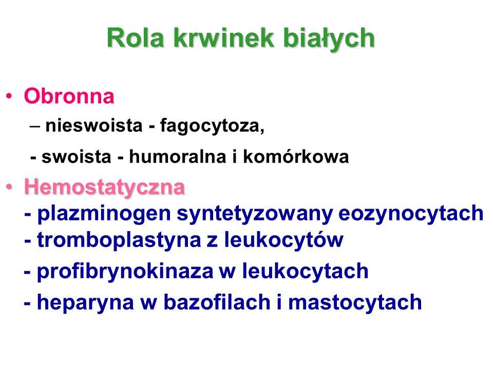 Rola krwinek białych Obronna –nieswoista - fagocytoza, - swoista - humoralna i komórkowa HemostatycznaHemostatyczna - plazminogen syntetyzowany eozyno