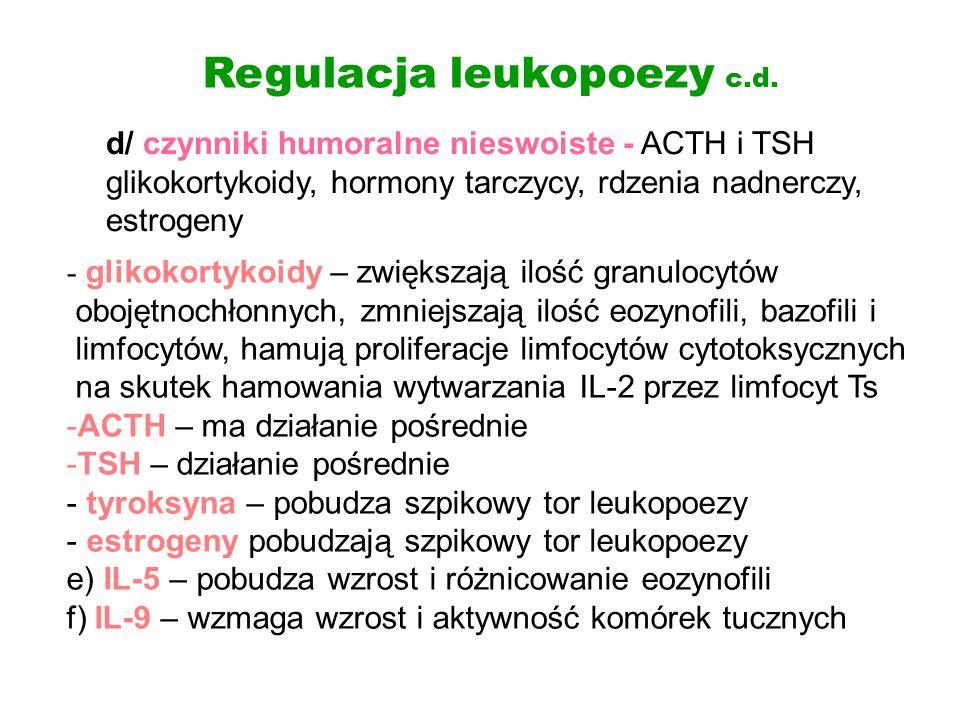 Regulacja leukopoezy c.d. - glikokortykoidy – zwiększają ilość granulocytów obojętnochłonnych, zmniejszają ilość eozynofili, bazofili i limfocytów, ha