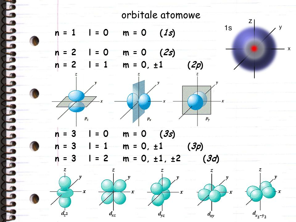 orbitale atomowe n = 4l = 1m = 0, ±1(4p) n = 4l = 0m = 0(4s) n = 4l = 2m = 0, ±1, ±2(4d) n = 4l = 3m = 0, ±1, ±2, ±3(4f)