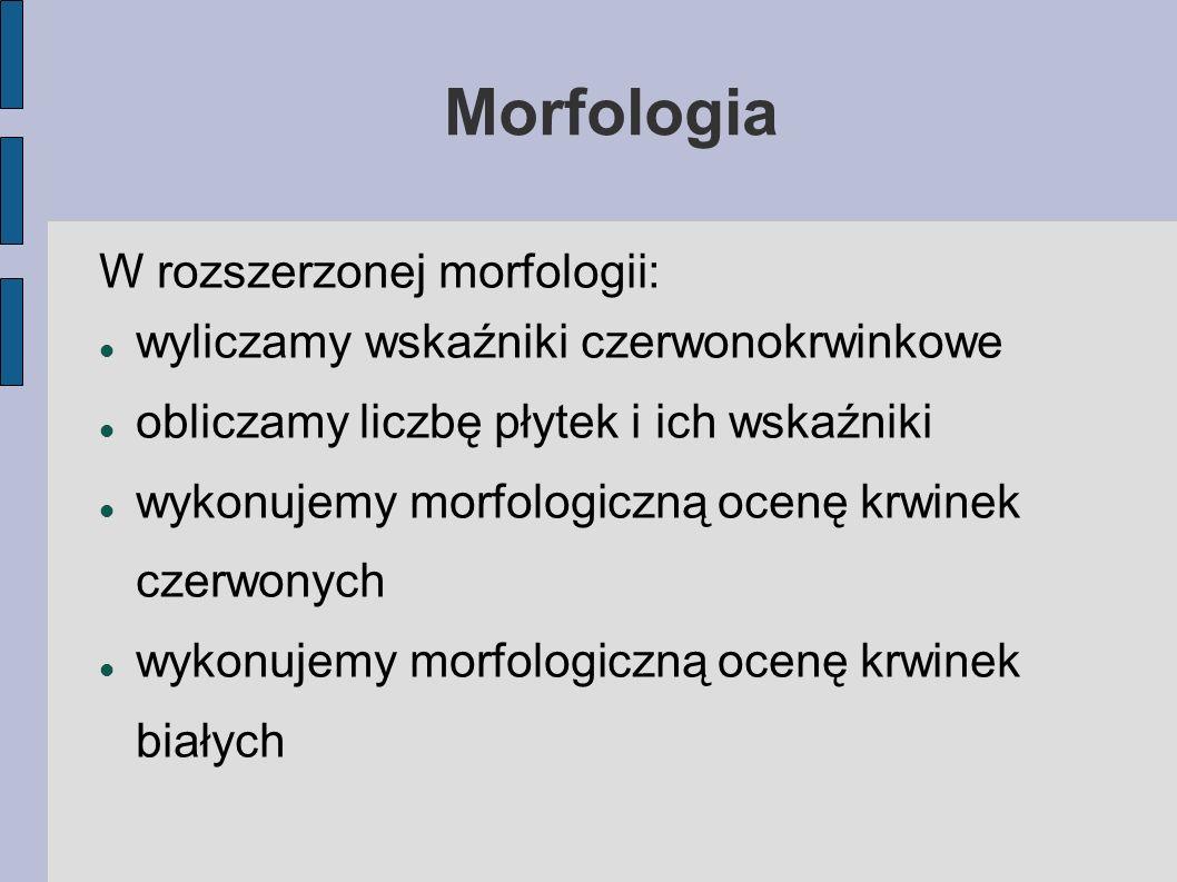 Morfologia W rozszerzonej morfologii: wyliczamy wskaźniki czerwonokrwinkowe obliczamy liczbę płytek i ich wskaźniki wykonujemy morfologiczną ocenę krw