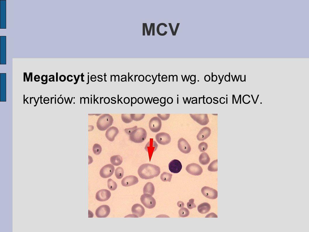 Megalocyt jest makrocytem wg. obydwu kryteriów: mikroskopowego i wartosci MCV. MCV
