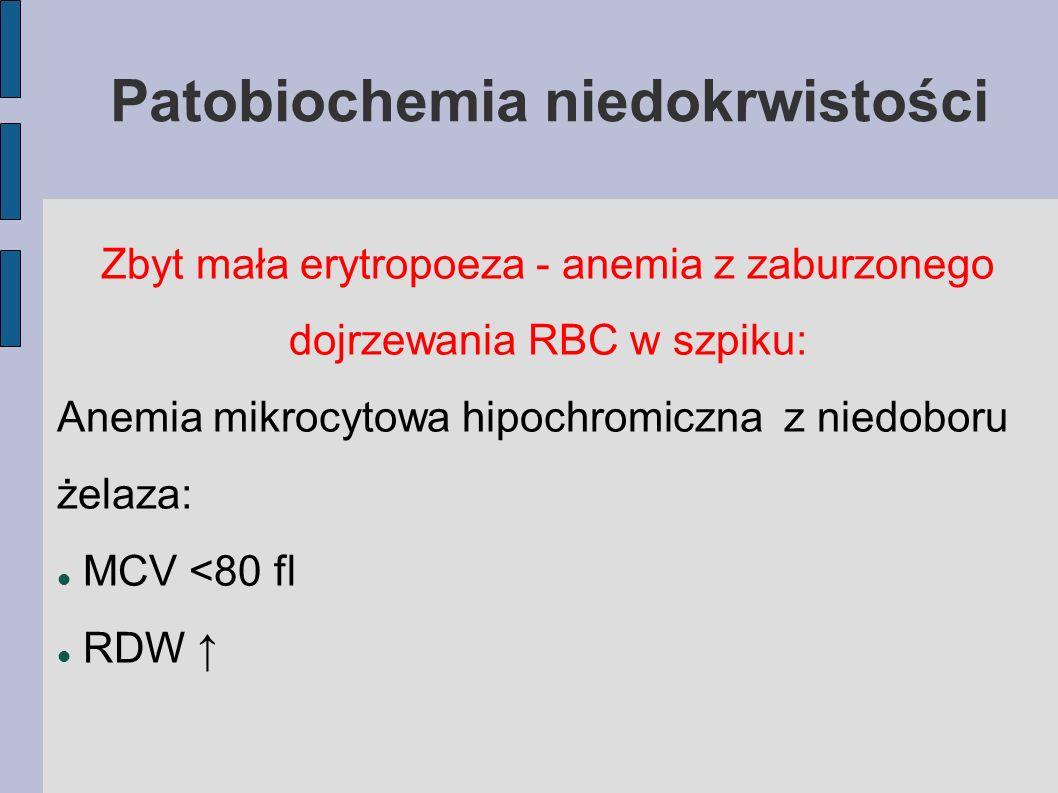 Patobiochemia niedokrwistości Zbyt mała erytropoeza - anemia z zaburzonego dojrzewania RBC w szpiku: Anemia mikrocytowa hipochromiczna z niedoboru żel