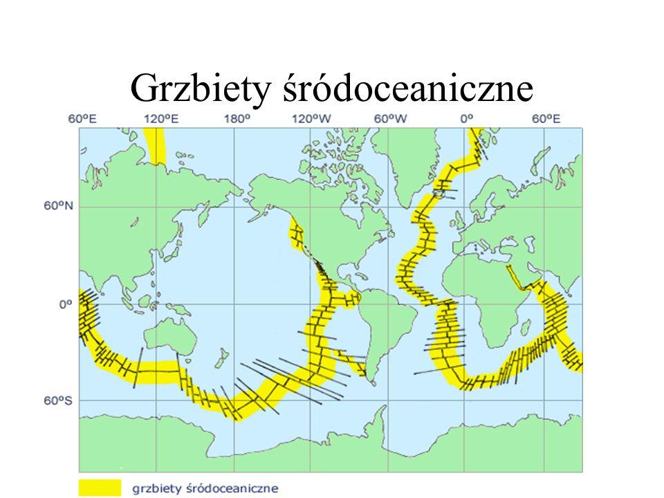 Grzbiety śródoceaniczne