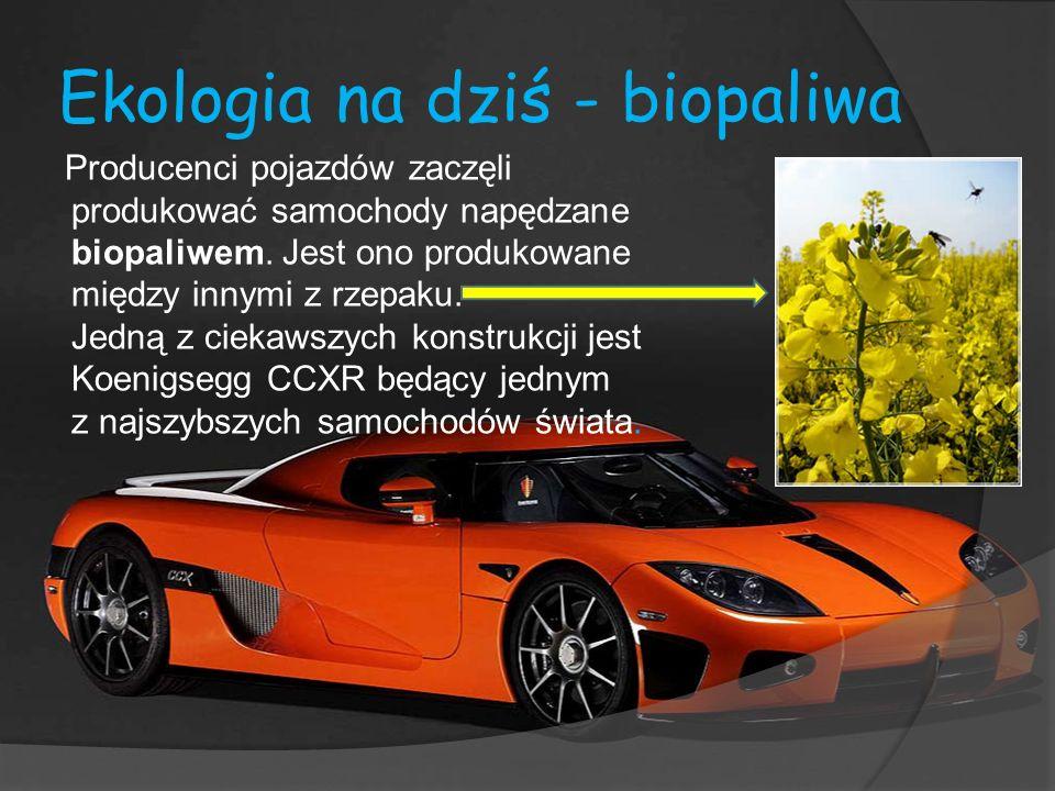 Ekologia na dziś - biopaliwa Producenci pojazdów zaczęli produkować samochody napędzane biopaliwem. Jest ono produkowane między innymi z rzepaku. Jedn