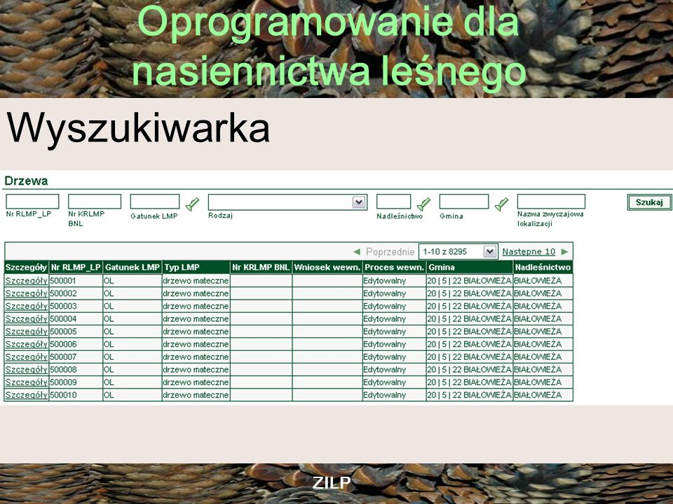 Oprogramowanie dla nasiennictwa leśnego ZILP Aplikacja Meldunku o urodzaju nasion Trzeci rok działania jako zdalny meldunek Przygotowywana jest obecnie nowa aplikacja oparta o technologię ADF JSF Zmieniona klasyfikacja stopni urodzaju nasion: dobry, średni, słaby, zły, brak danych Dynamiczne mapki prezentujące statystyki akcji meldunkowej