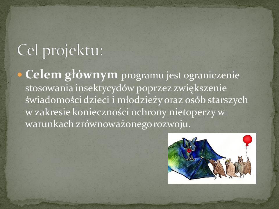 www.pke-zg.org.pl/nietoperz informacje o projekcie, dla nauczycieli, dla uczniów, dla ciekawskich, kontakt do biura projektu i do asystentów regionalnych materiały z warsztatów dla nauczycieli – prace powarsztatowe uczestników prace uczniów, którzy zwyciężyli w konkursach wojewódzkich materiały edukacyjne w wersji elektronicznej