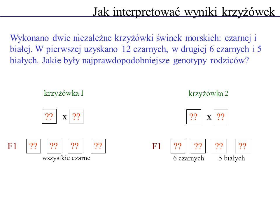 Jak interpretować wyniki krzyżówek Wykonano dwie niezależne krzyżówki świnek morskich: czarnej i białej. W pierwszej uzyskano 12 czarnych, w drugiej 6