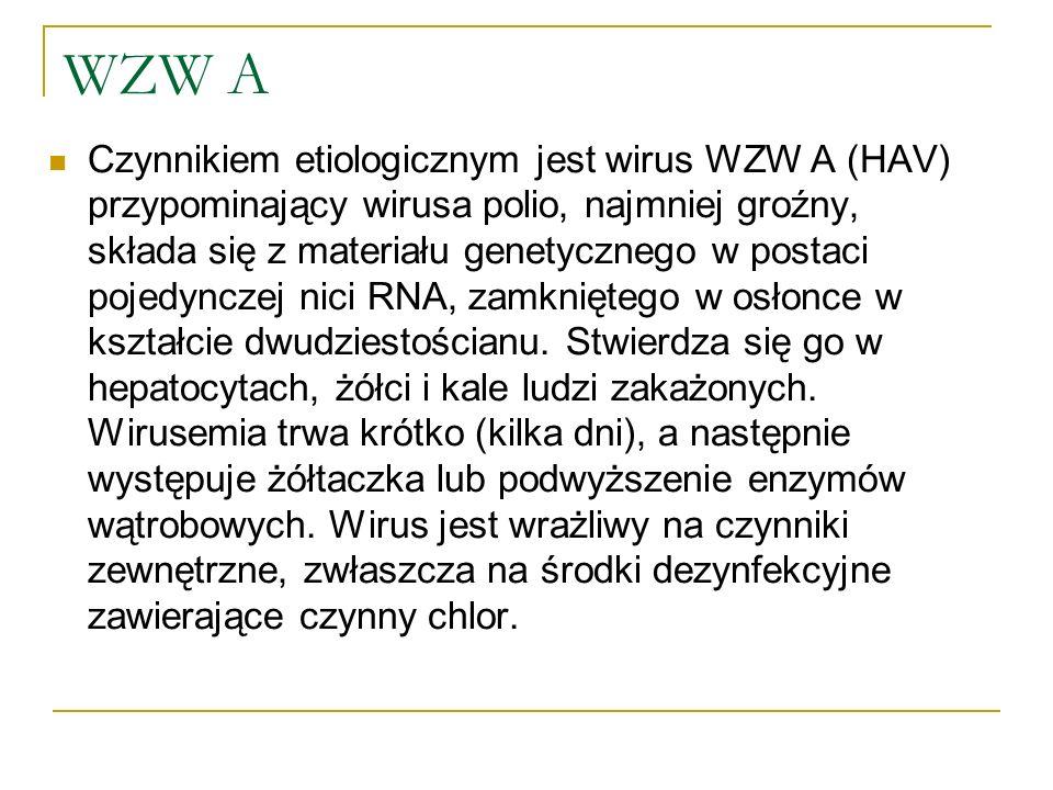 WZW A Czynnikiem etiologicznym jest wirus WZW A (HAV) przypominający wirusa polio, najmniej groźny, składa się z materiału genetycznego w postaci poje