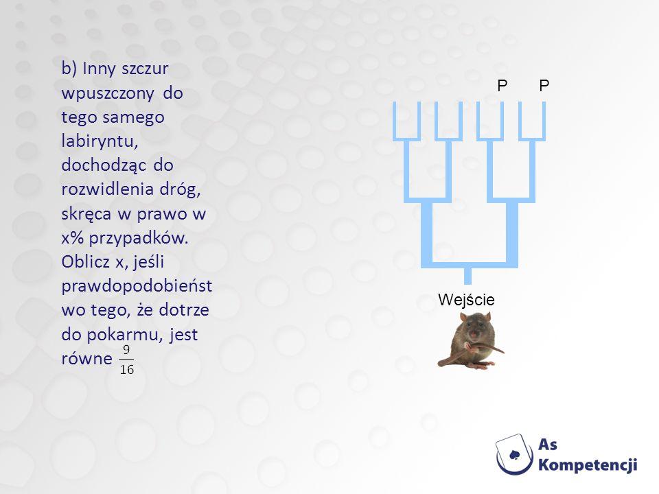 b) Inny szczur wpuszczony do tego samego labiryntu, dochodząc do rozwidlenia dróg, skręca w prawo w x% przypadków.