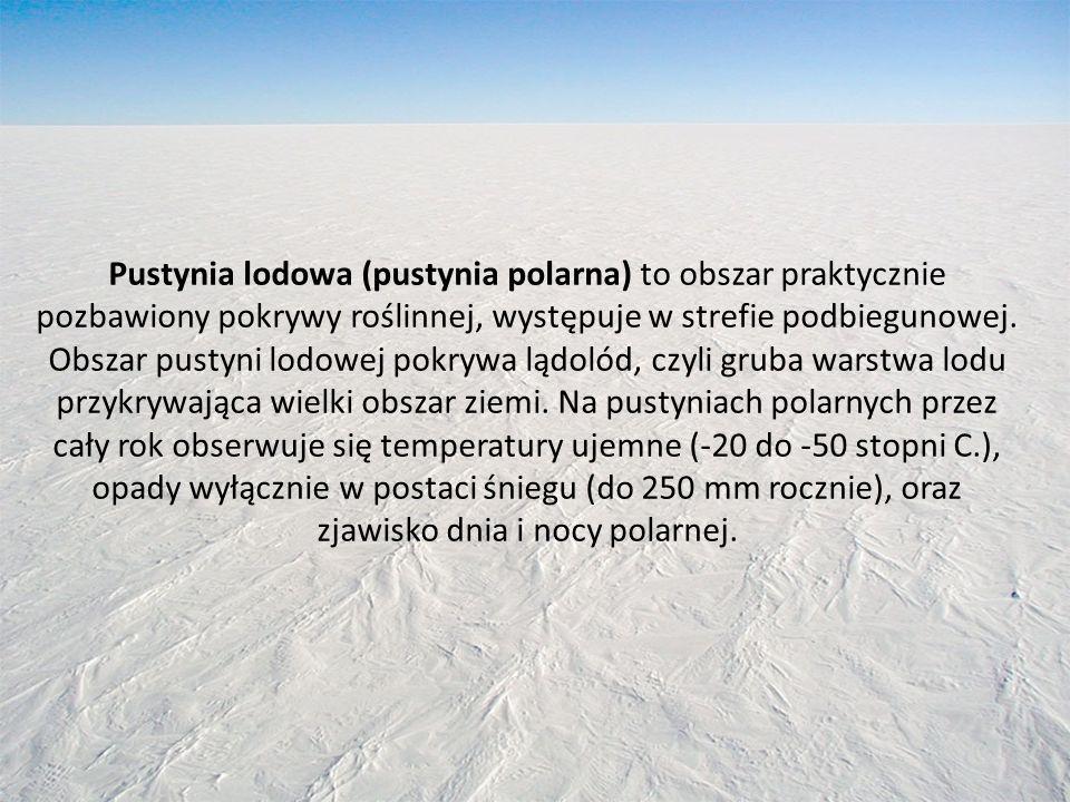 Pustynia lodowa (pustynia polarna) to obszar praktycznie pozbawiony pokrywy roślinnej, występuje w strefie podbiegunowej. Obszar pustyni lodowej pokry