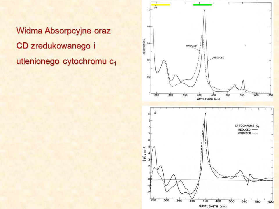 Widma Absorpcyjne oraz CD zredukowanego i utlenionego cytochromu c 1