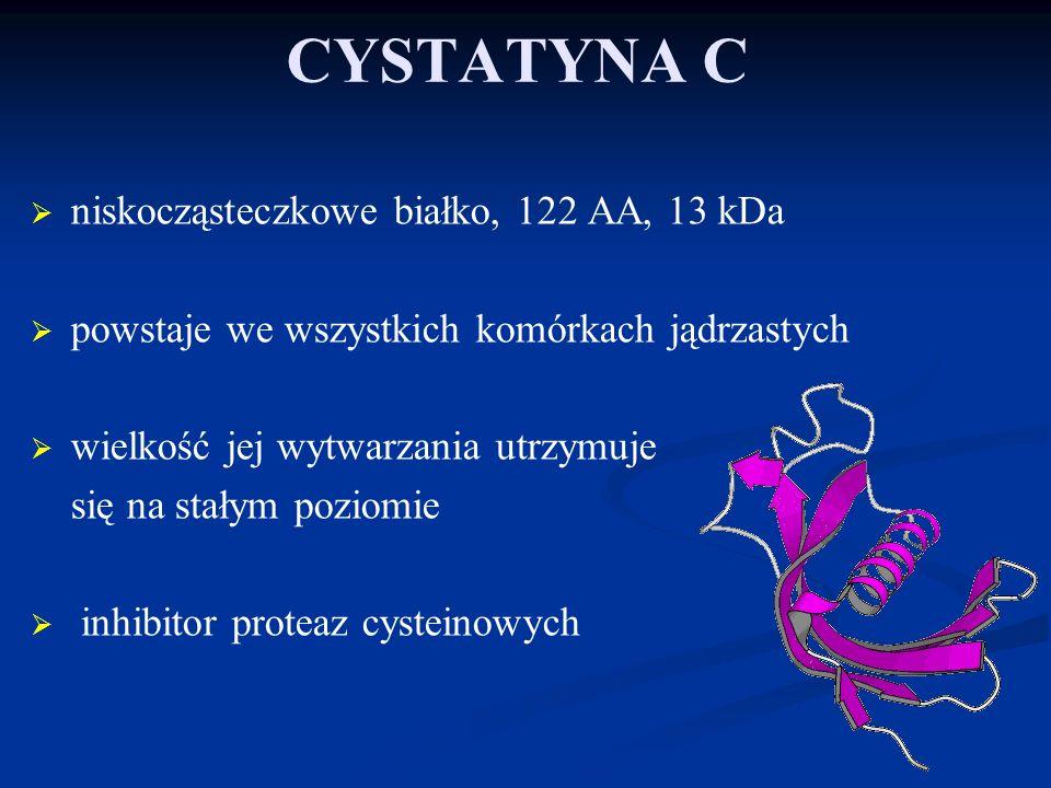 Nie stwierdzono korelacji między cystatyną C a kreatyniną, ani pozostałymi parametrami