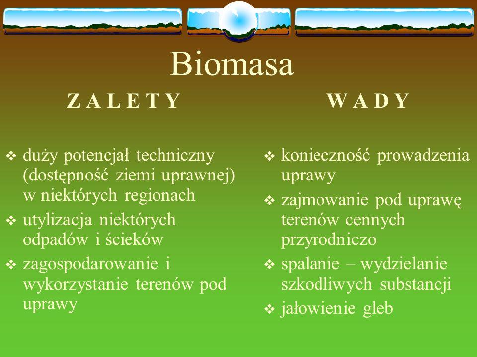 Biomasa Z A L E T Y duży potencjał techniczny (dostępność ziemi uprawnej) w niektórych regionach utylizacja niektórych odpadów i ścieków zagospodarowa